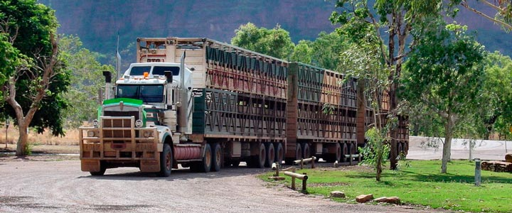 Roadtrain in Timber Creek