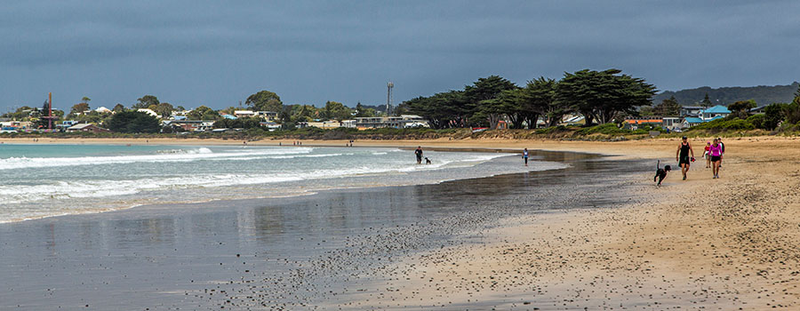 01-01-2015 020 Apollo Bay GOR
